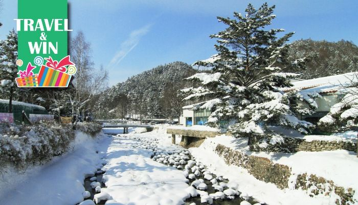 Holiday Package Deals | Korea: 6D4N Guided Tour with Hotel Stays